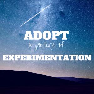 Adopt a Posture of Experimentation